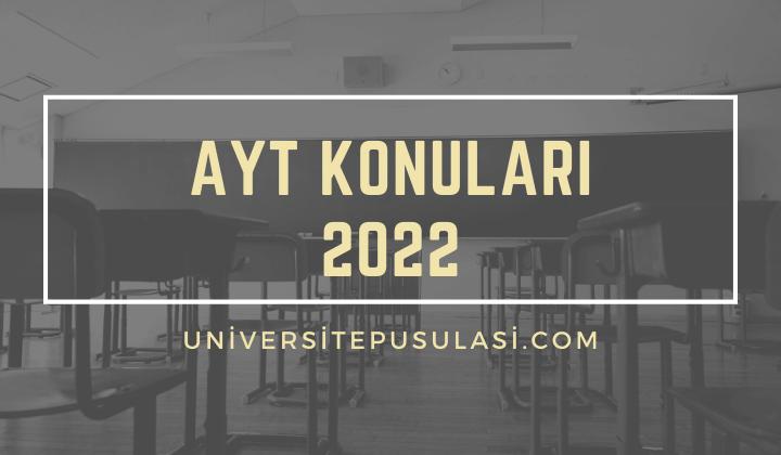 2022 AYT Konuları